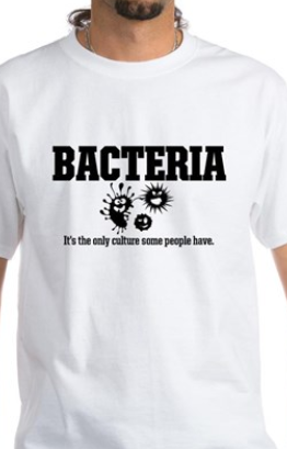 bacteria: it's the only culture some people have